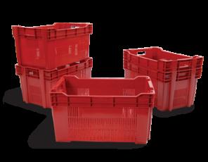 Caixa plástica para Hortifruti: características e usos